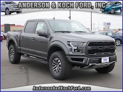 New 2019 Ford F-150 Raptor Truck SuperCrew Cab for sale in North Branch, MN