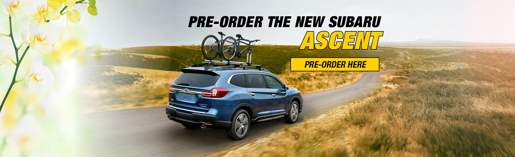 Subaru Antelope Valley New Used Subaru Dealer Lancaster - Subaru valley motors