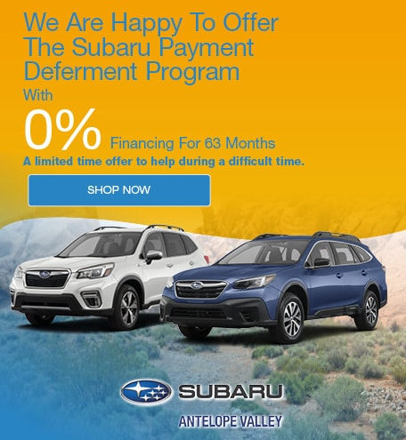 Subaru Payment Deferment Program