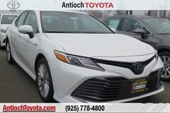 2019 Toyota Camry Hybrid XLE Sedan