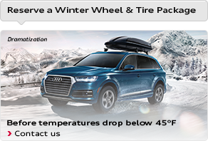 audi tires for winter