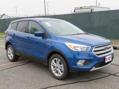 New 2019 Ford Escape SE SUV for sale in Brenham, TX