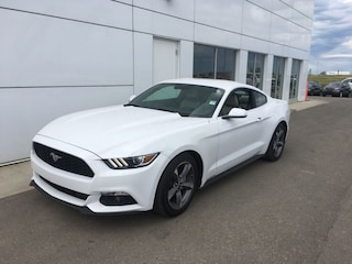 2015 Ford Mustang Coupe V6 Financing From 4.99% APR!! OAC. Coupe