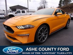 2019 Ford Mustang Ecoboost Coupe For Sale in West Jefferson