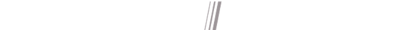 AutoNation Express logo