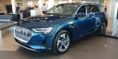 2019 Audi e-tron Technik Quattro SUV