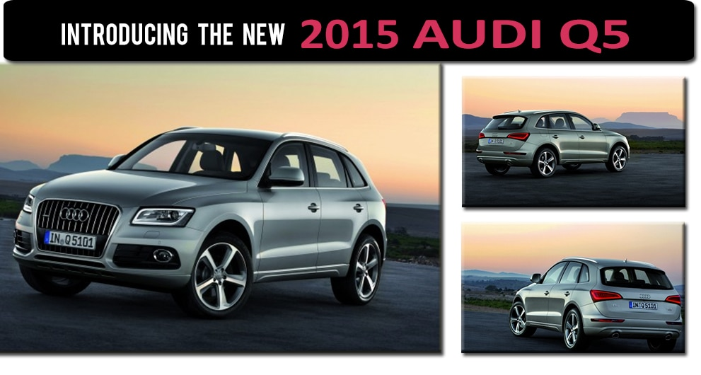New Audi Q In Lynbrook NY Audi Dealer Serving Great Neck NY - Audi dealership long island