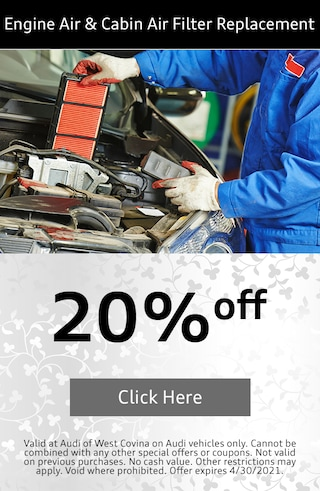 Engine Air & Cabin Filter Replacement April