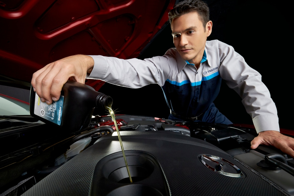 Oil Change Lakewood CO at Auto Aves Serving Denver | Oil ...