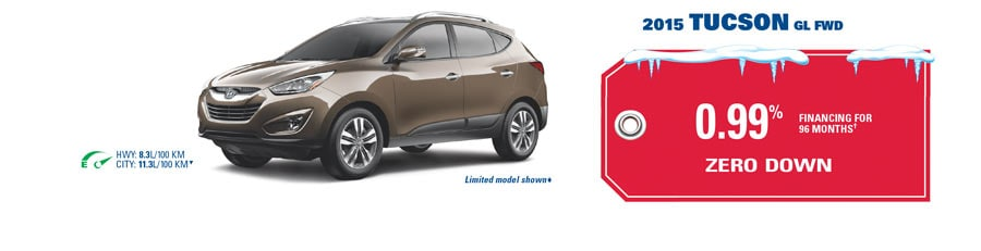 hyundai year end clearance event in edmonton area at sherwood park