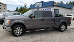 2011 Ford F-150 XLT 4X4 Camion