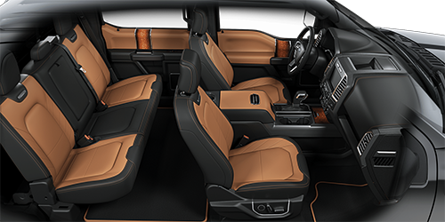 2016 ford f150 interior color options autonation ford corpus christi. Black Bedroom Furniture Sets. Home Design Ideas