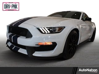 2018 Ford Shelby GT350 Shelby GT350 2dr Car
