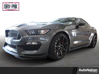 2018 Ford Shelby GT350 Shelby GT350R 2dr Car