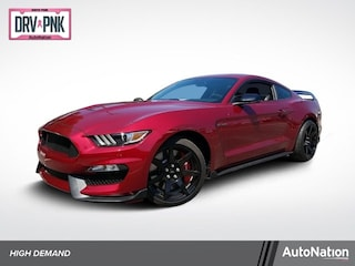 2019 Ford Shelby GT350 Shelby GT350R Coupe