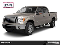 2011 Ford F-150 Platinum Truck SuperCrew Cab