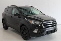 2019 Ford Escape SE SUV 1FMCU9GD8KUA17120 in Sturgis, MI