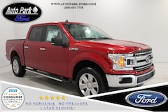 New 2019 Ford F-150 XLT Truck 1FTEW1E54KFA12246 for sale in Bremen, IN