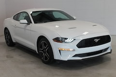 2020 Ford Mustang Ecoboost Coupe in Sturgis, MI