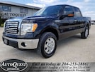 2012 Ford F-150 XLT - 5L 4x4, Backup Camera, Bluetooth & more! Super Crew