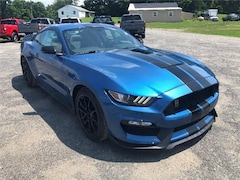 New 2019 Ford Shelby GT350 Premium 2dr Fastback Coupe in Comstock, NY