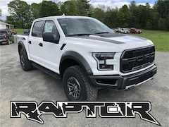 2019 Ford F-150 Raptor Truck For Sale in Comstock, NY
