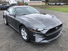 New 2019 Ford Mustang EcoBoost 2dr Fastback Coupe in Comstock, NY