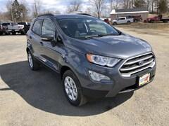 New 2019 Ford EcoSport SE SUV in Comstock, NY