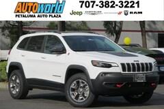2019 Jeep Cherokee TRAILHAWK ELITE 4X4 Sport Utility 26646
