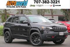 2019 Jeep Cherokee TRAILHAWK ELITE 4X4 Sport Utility 27012