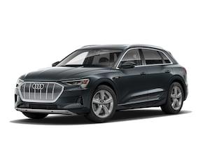 2019 Audi e-tron Premium Plus Sport Utility Vehicle