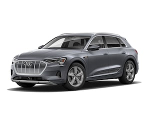 2019 Audi e-tron Premium Plus SUV for sale at Jack Daniels Audi of Upper Saddle River, NJ