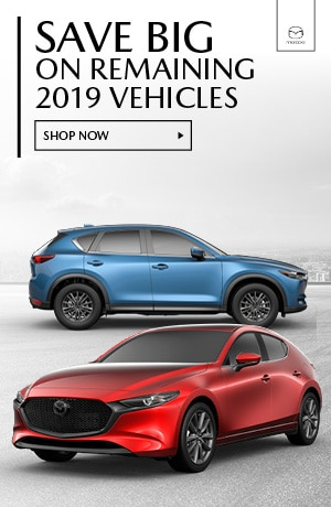 January 2019 Remaining Inventory Specials