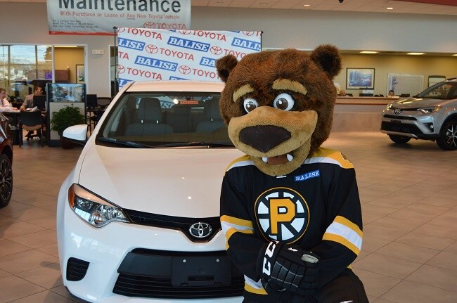 Providence Bruins Amp Samboni Host Balise Night At The Dunk