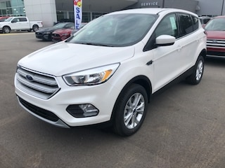 New 2019 Ford Escape SE SUV For Sale Holland, MI