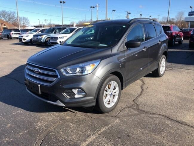 Used 2017 Ford Escape SE SUV For Sale Holland, MI