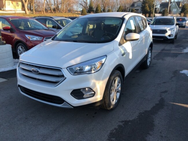 New 2019 Ford Escape SE SUV For sale/lease Holland, MI