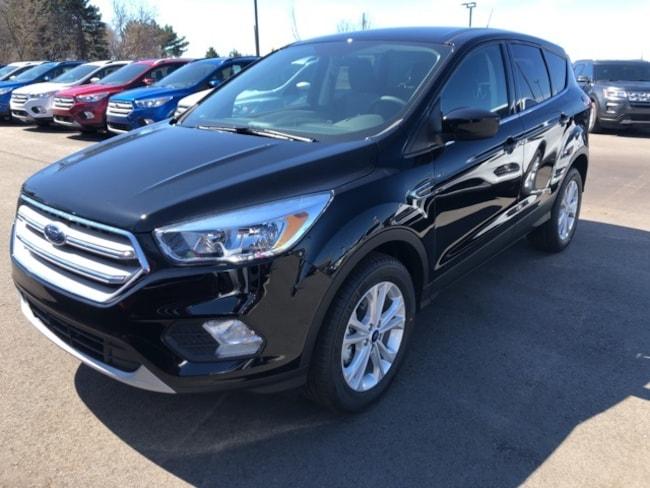 New 2019 Ford Escape SE SUV For sale/lease Holland, MI