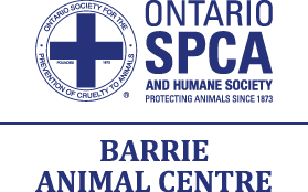 In support of Barrie SPCA