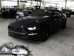 New 2019 Ford Mustang Ecoboost Convertible FN5624 for Sale in Palatka, FL, at Beck Ford Lincoln