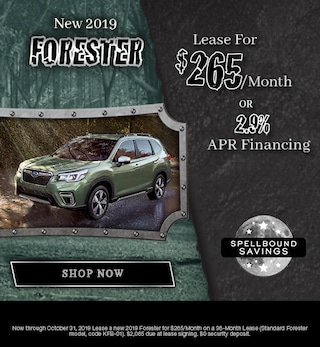 New 2019 Subaru Forester - October Special
