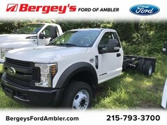 New 2019 Ford Super Duty F-450 DRW 2WD REG CAB Truck Regular Cab for sale in Lansdale