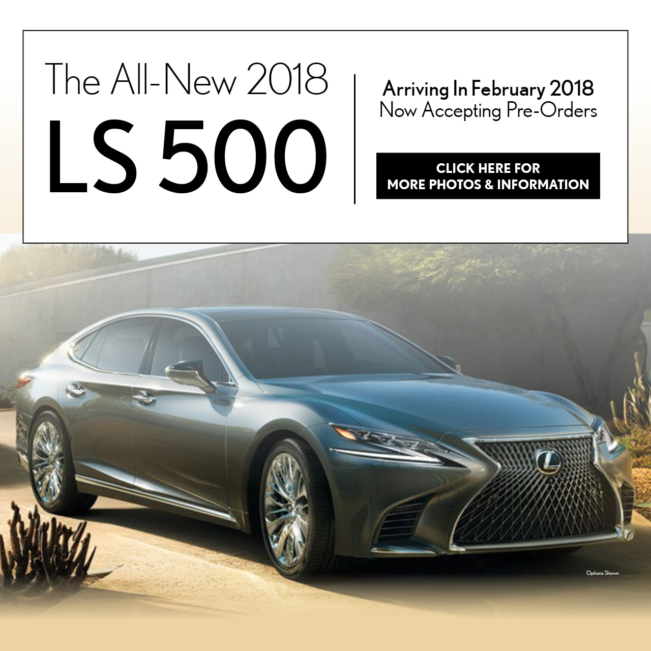 Lexus of Jacksonville  New Lexus dealership in