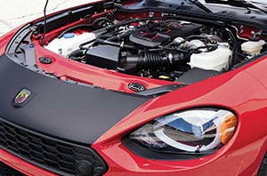 FIAT Motor Quick Look