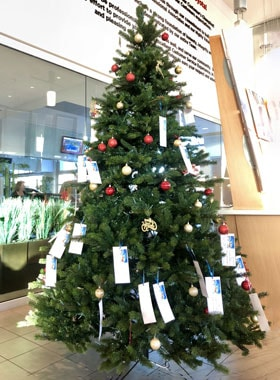 Camelback Toyota Christmas Tree