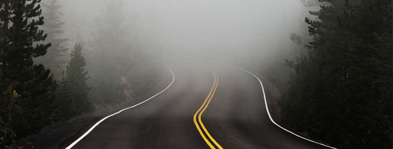 Dense Fog on the Road