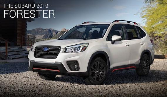 2019 Subaru Forester Alexandria Va New Subaru Forester Offers In