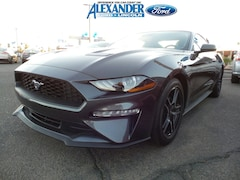 New 2019 Ford Mustang Ecoboost EcoBoost Fastback 1FA6P8TH6K5169487 for sale in Yuma, AZ