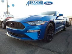 New 2019 Ford Mustang Ecoboost EcoBoost Fastback for sale in Yuma, AZ