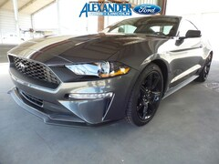 New 2019 Ford Mustang Ecoboost EcoBoost Fastback 1FA6P8TH4K5176793 for sale in Yuma, AZ